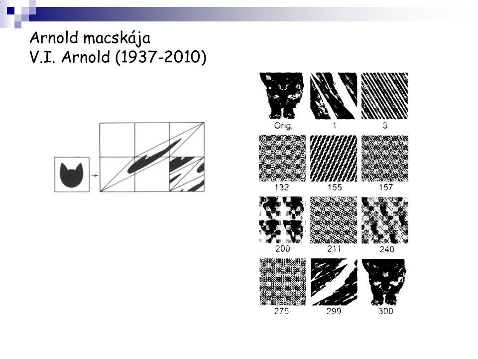 Arnold macskája V.I. Arnold (1937-2010)