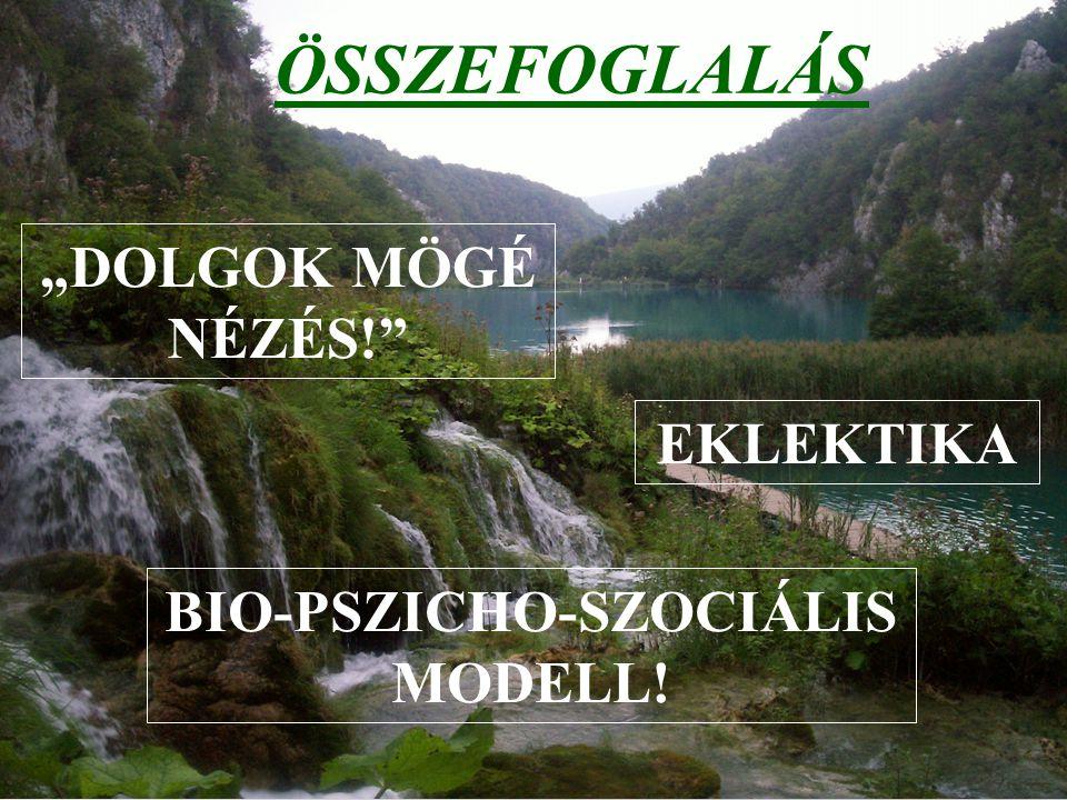 BIO-PSZICHO-SZOCIÁLIS MODELL!