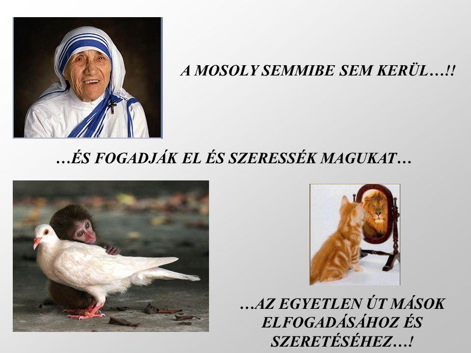 A MOSOLY SEMMIBE SEM KERÜL…!!