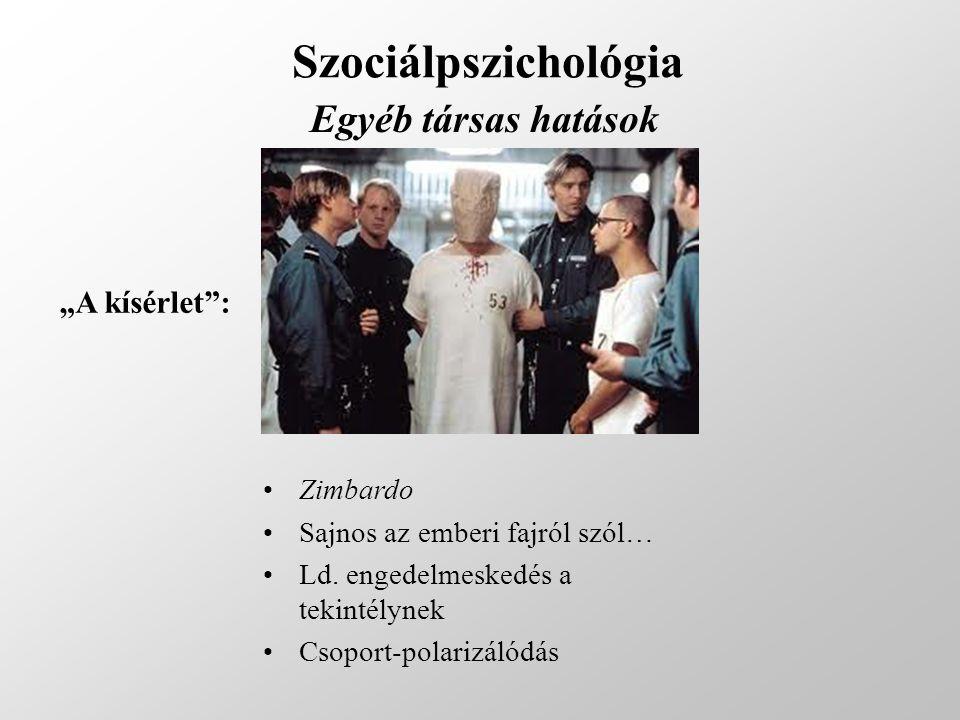 """Szociálpszichológia Egyéb társas hatások """"A kísérlet : Zimbardo"""