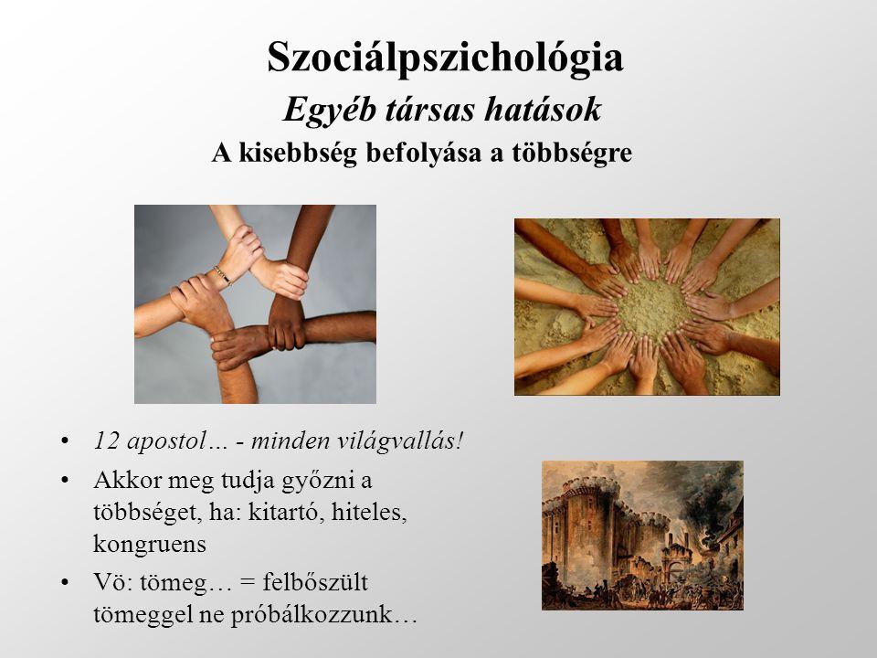 Szociálpszichológia Egyéb társas hatások