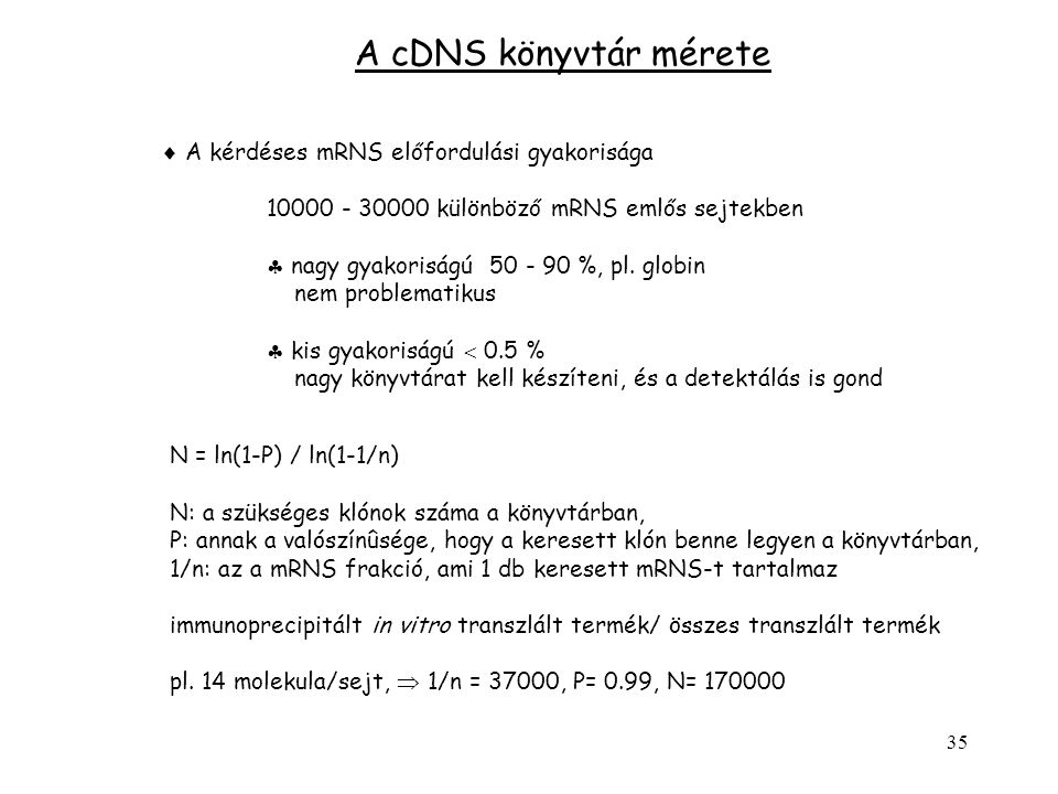 A cDNS könyvtár mérete  A kérdéses mRNS előfordulási gyakorisága