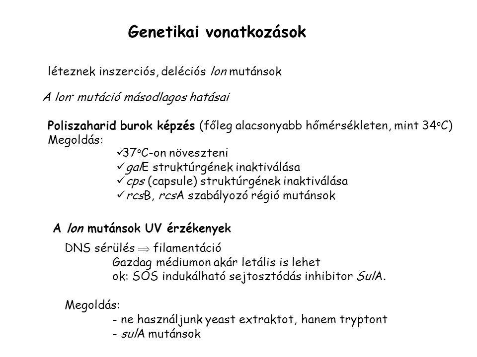 Genetikai vonatkozások