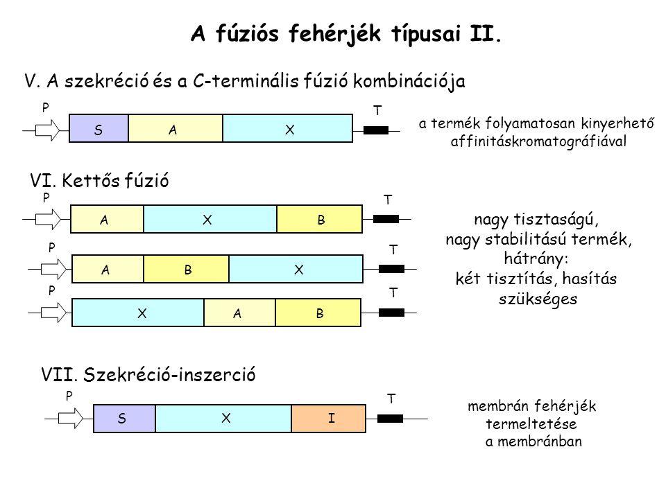 A fúziós fehérjék típusai II.