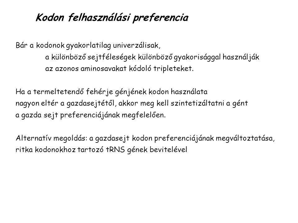 Kodon felhasználási preferencia