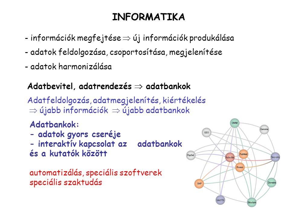 INFORMATIKA információk megfejtése  új információk produkálása