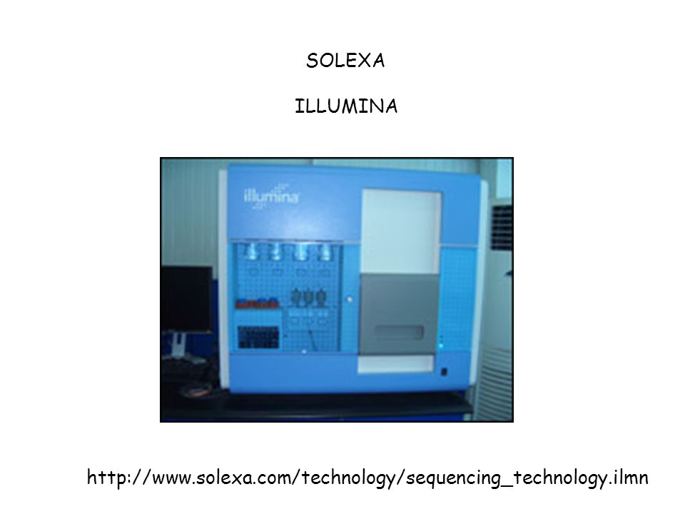SOLEXA ILLUMINA http://www.solexa.com/technology/sequencing_technology.ilmn