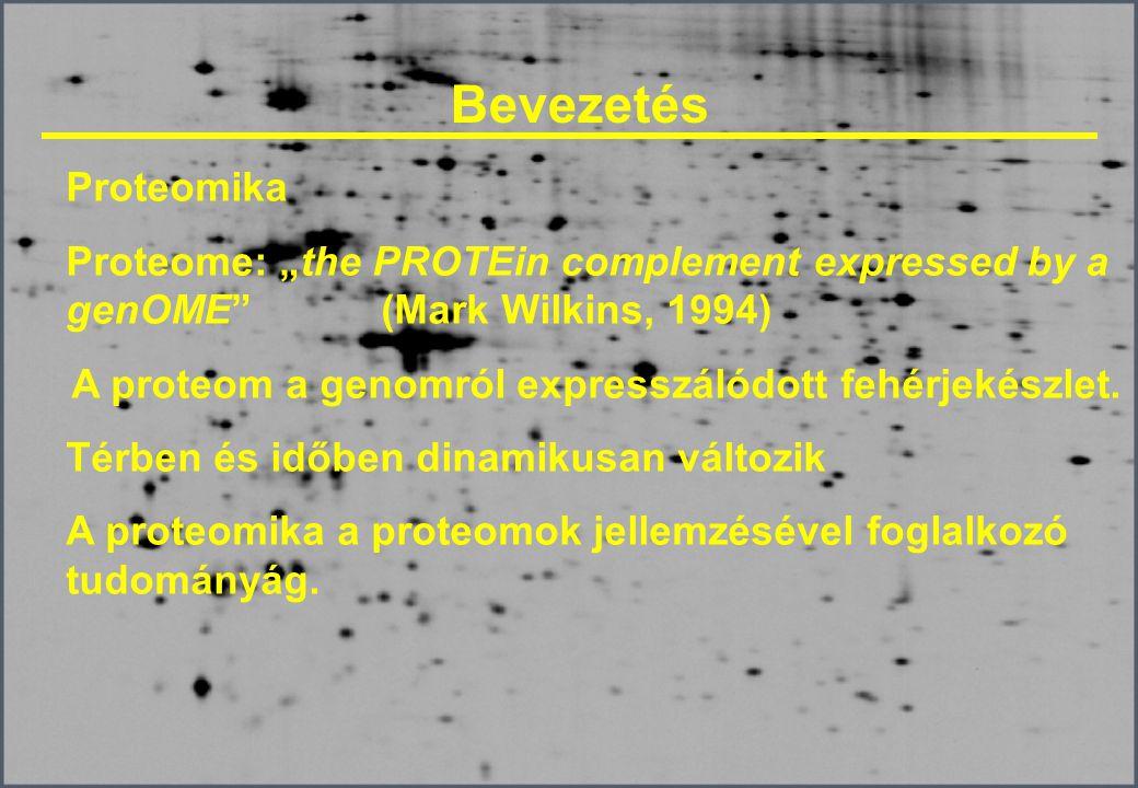 A proteom a genomról expresszálódott fehérjekészlet.