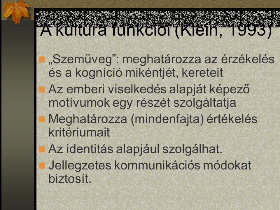 A kultúra funkciói (Klein, 1993)