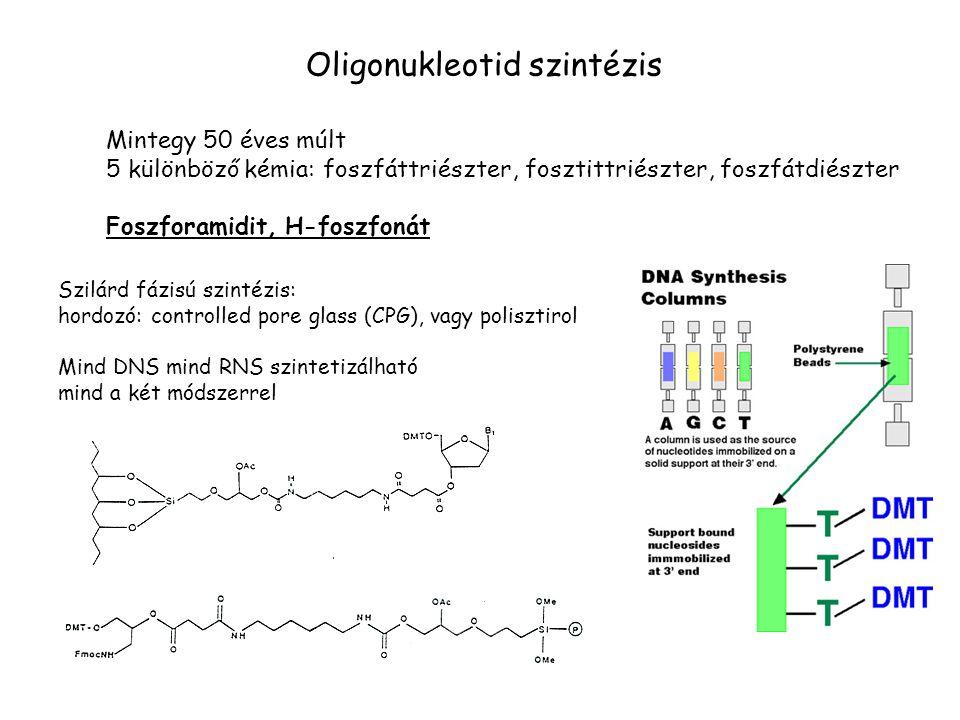 Oligonukleotid szintézis