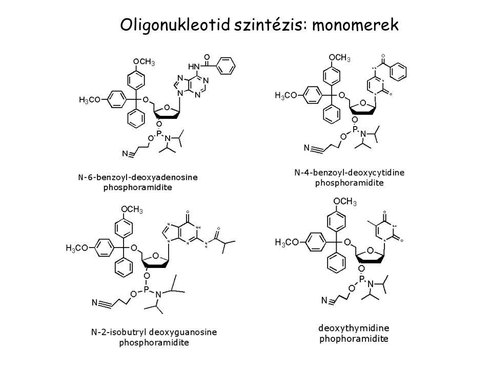 Oligonukleotid szintézis: monomerek