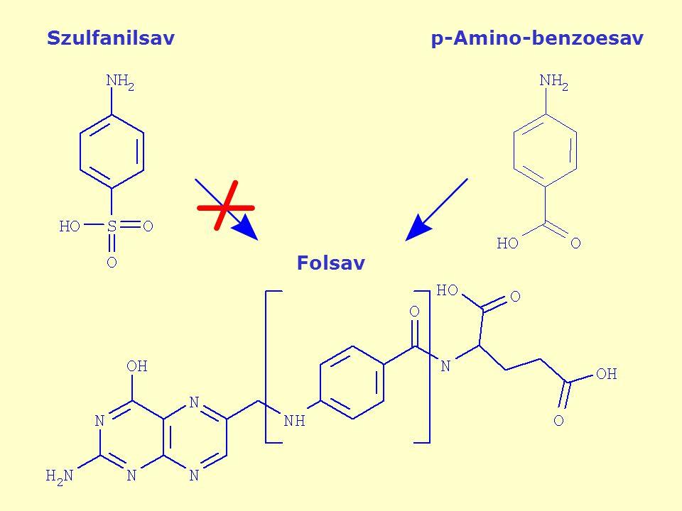 Szulfanilsav p-Amino-benzoesav Folsav