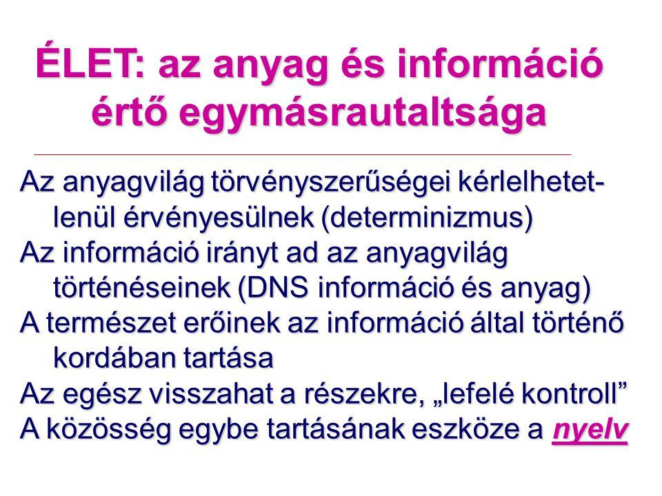 ÉLET: az anyag és információ értő egymásrautaltsága