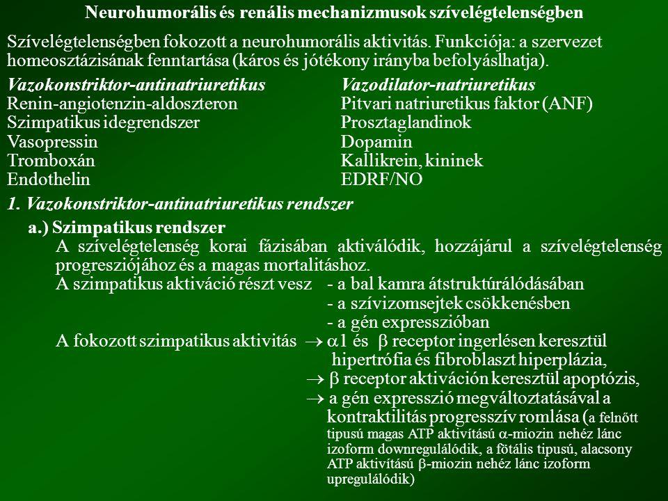 Neurohumorális és renális mechanizmusok szívelégtelenségben
