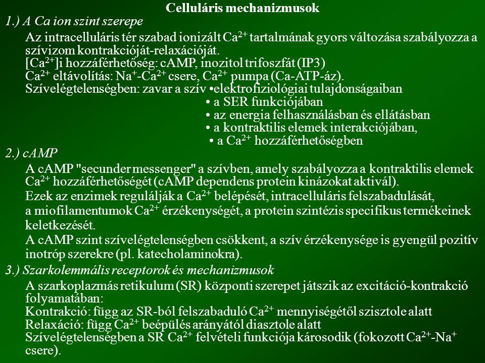 Celluláris mechanizmusok