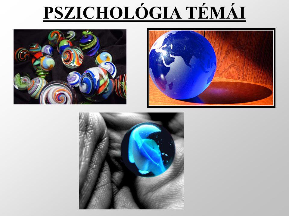 PSZICHOLÓGIA TÉMÁI Pszichológia általában