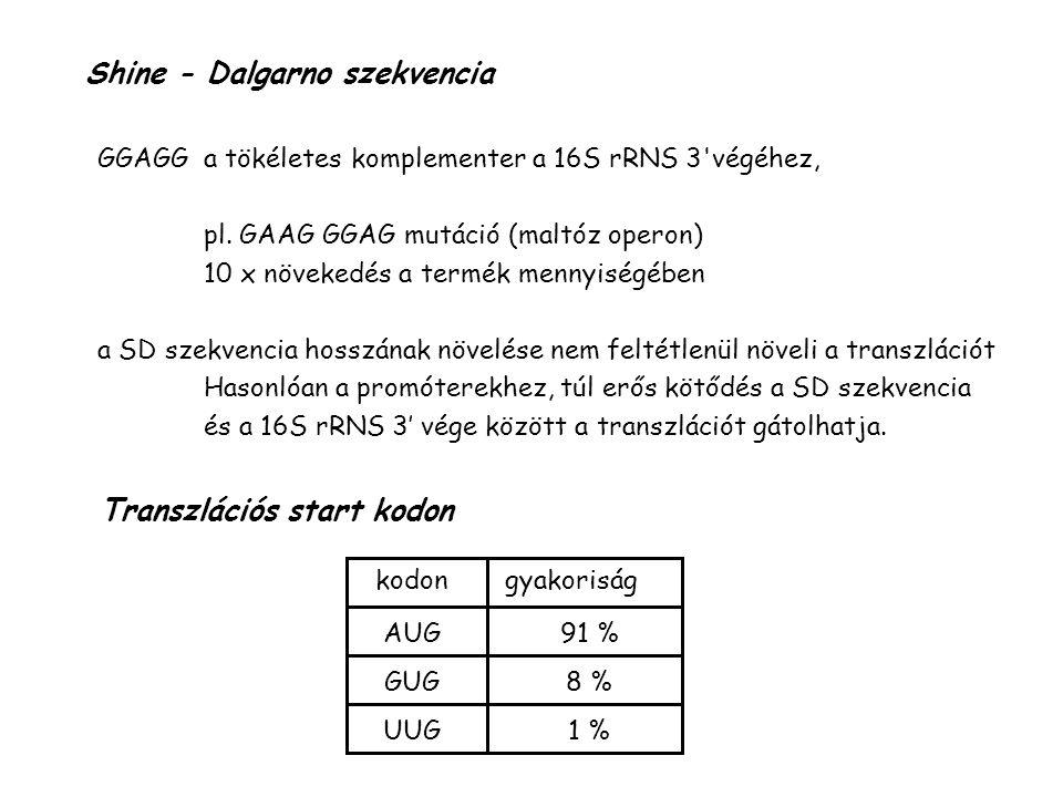 Shine - Dalgarno szekvencia