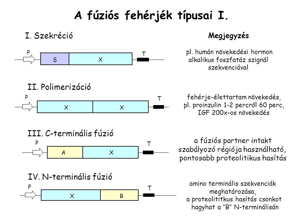 A fúziós fehérjék típusai I.