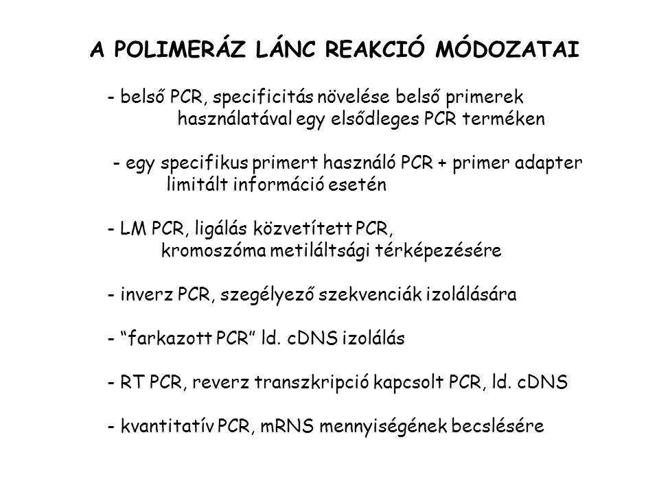 A POLIMERÁZ LÁNC REAKCIÓ MÓDOZATAI