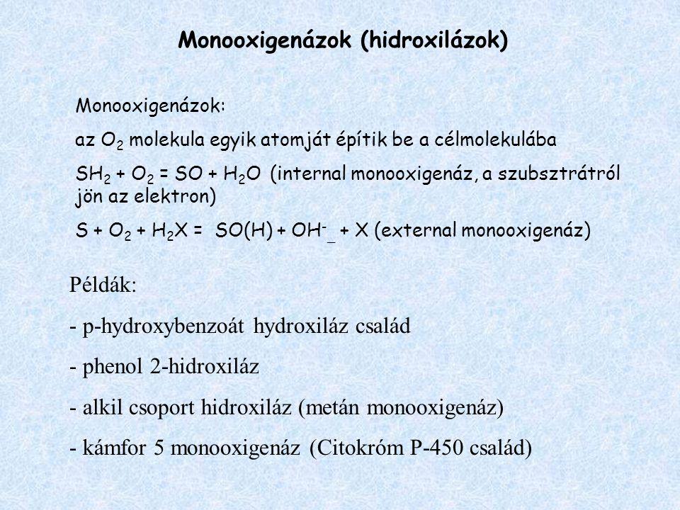 Monooxigenázok (hidroxilázok)