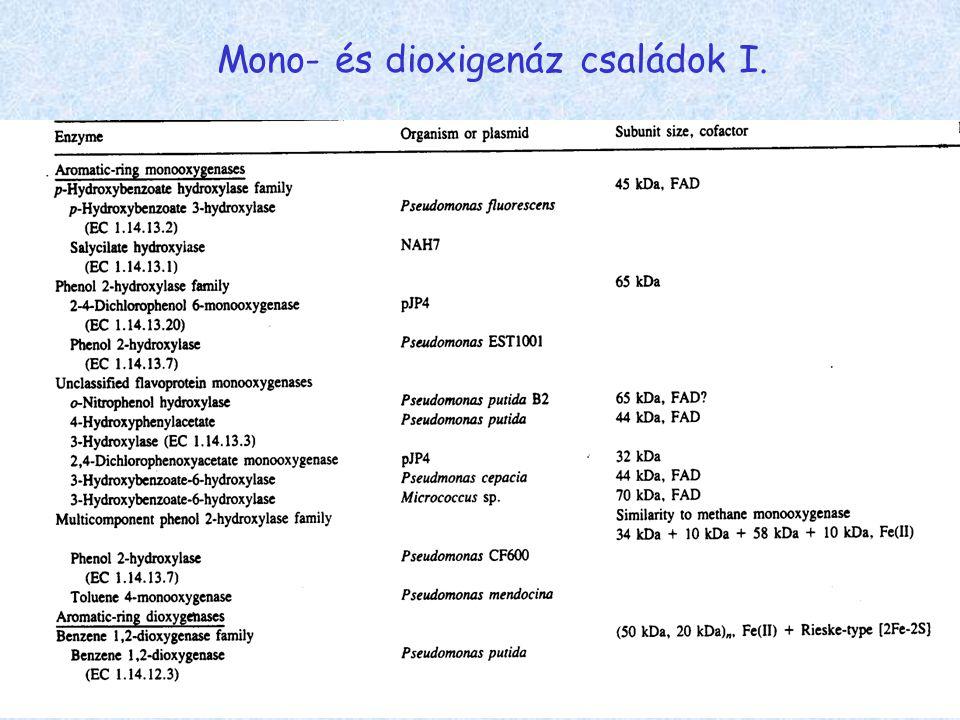 Mono- és dioxigenáz családok I.