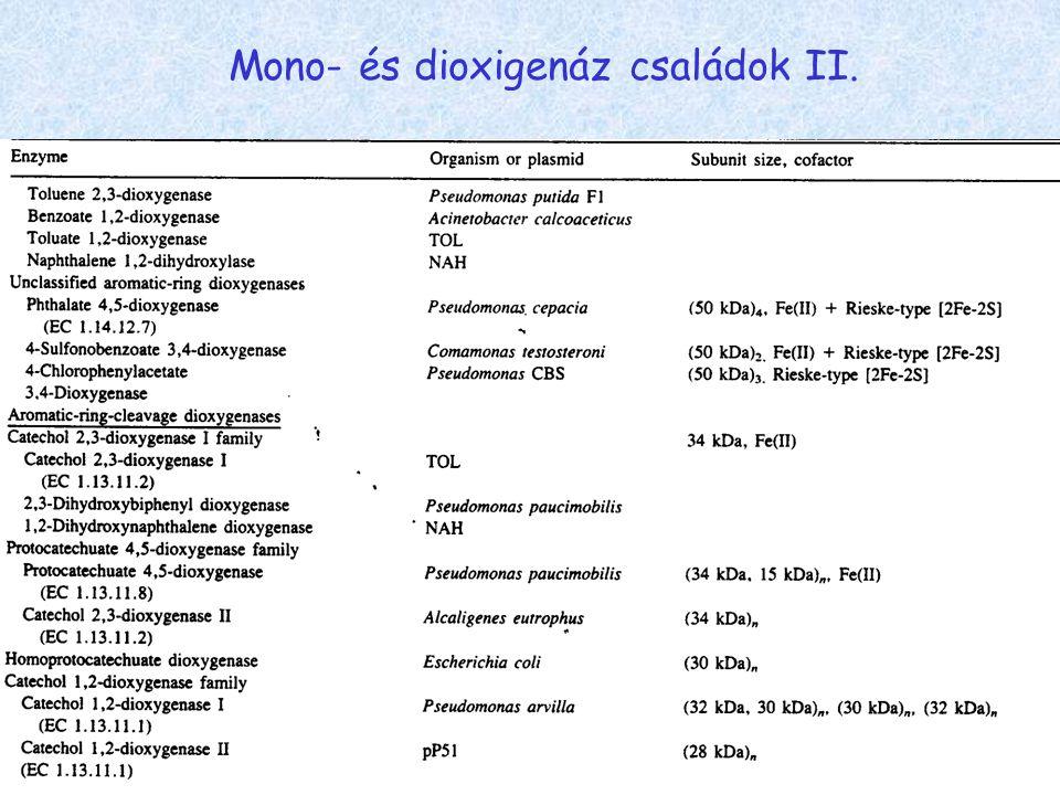 Mono- és dioxigenáz családok II.