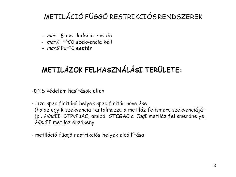 METILÁCIÓ FÜGGŐ RESTRIKCIÓS RENDSZEREK