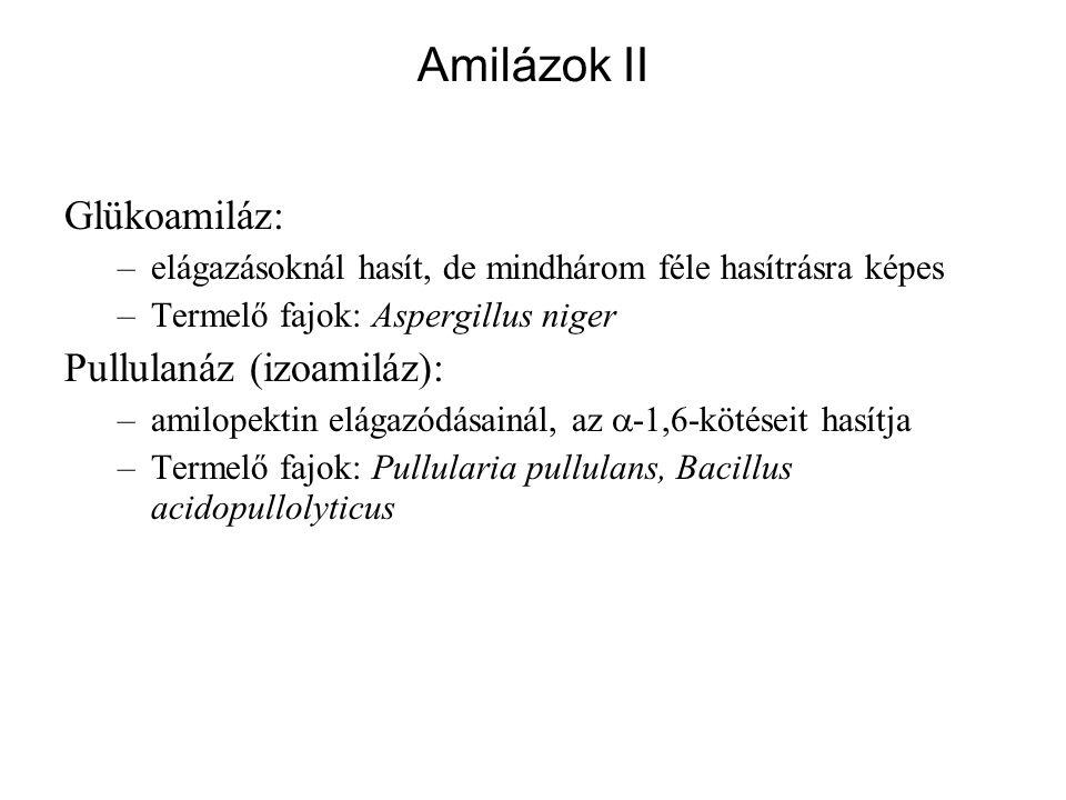 Amilázok II Glükoamiláz: Pullulanáz (izoamiláz):