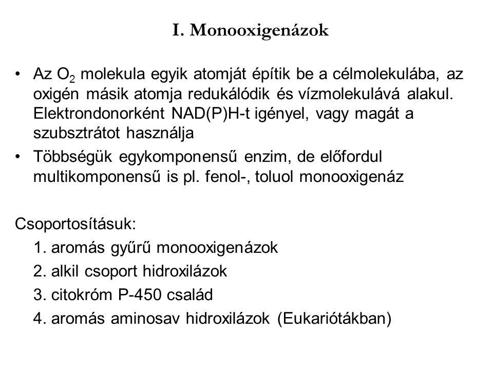 I. Monooxigenázok