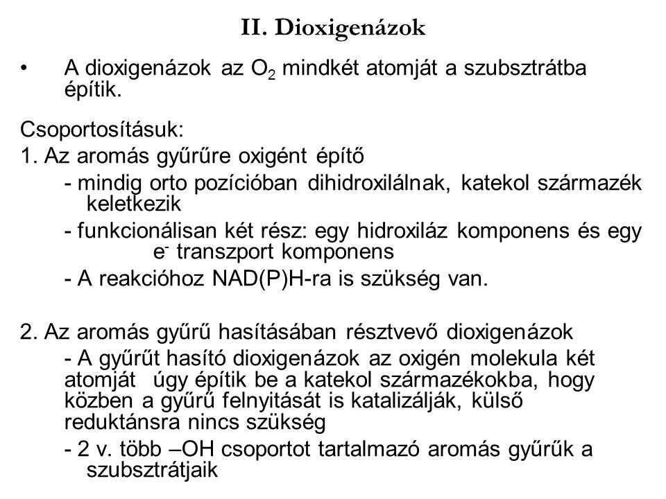 II. Dioxigenázok A dioxigenázok az O2 mindkét atomját a szubsztrátba építik. Csoportosításuk: 1. Az aromás gyűrűre oxigént építő.