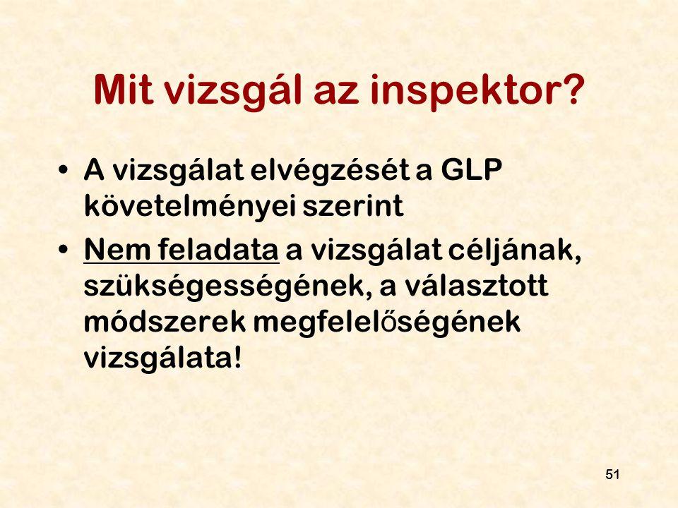 Mit vizsgál az inspektor