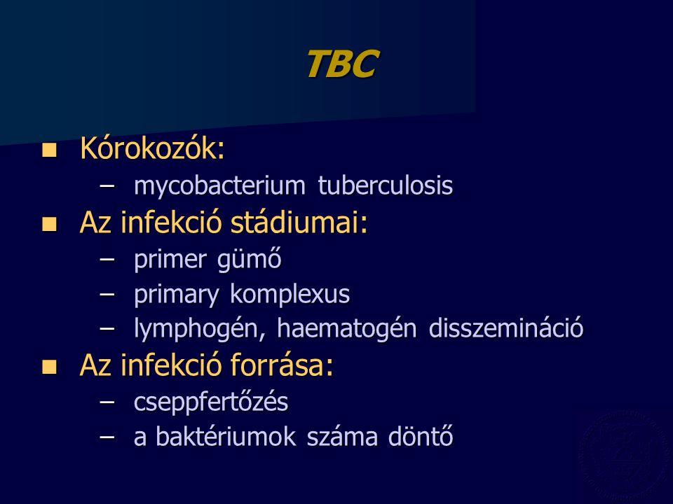 TBC Kórokozók: Az infekció stádiumai: Az infekció forrása: