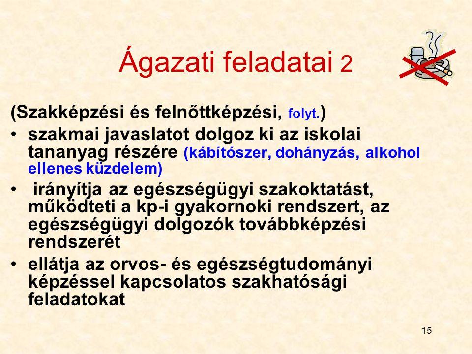 Ágazati feladatai 2 (Szakképzési és felnőttképzési, folyt.)