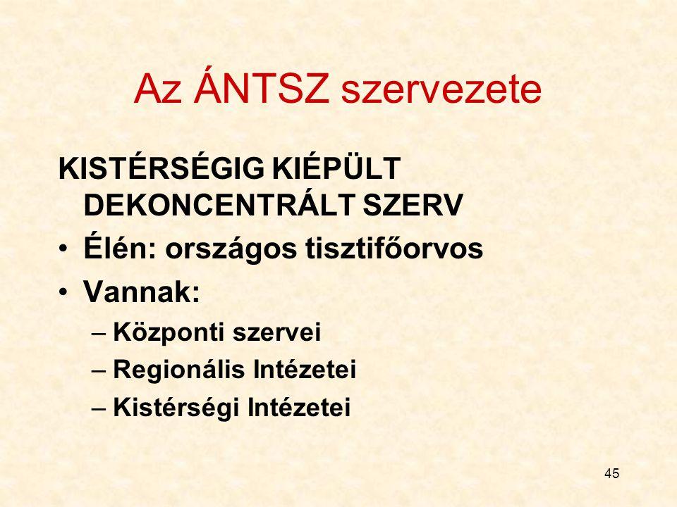 Az ÁNTSZ szervezete KISTÉRSÉGIG KIÉPÜLT DEKONCENTRÁLT SZERV
