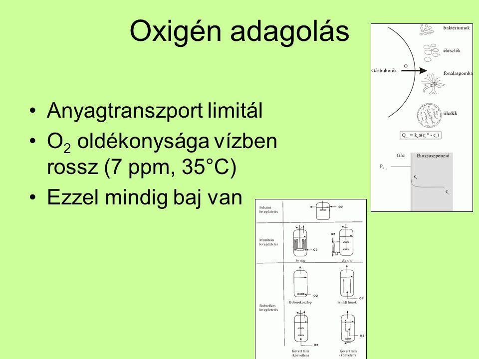 Oxigén adagolás Anyagtranszport limitál