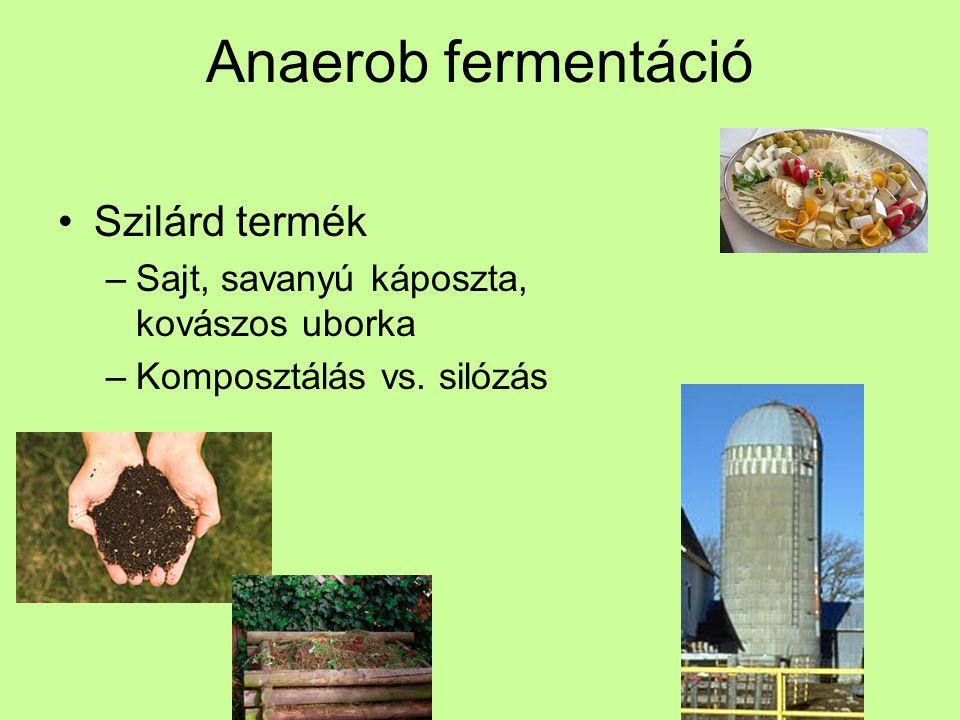 Anaerob fermentáció Szilárd termék
