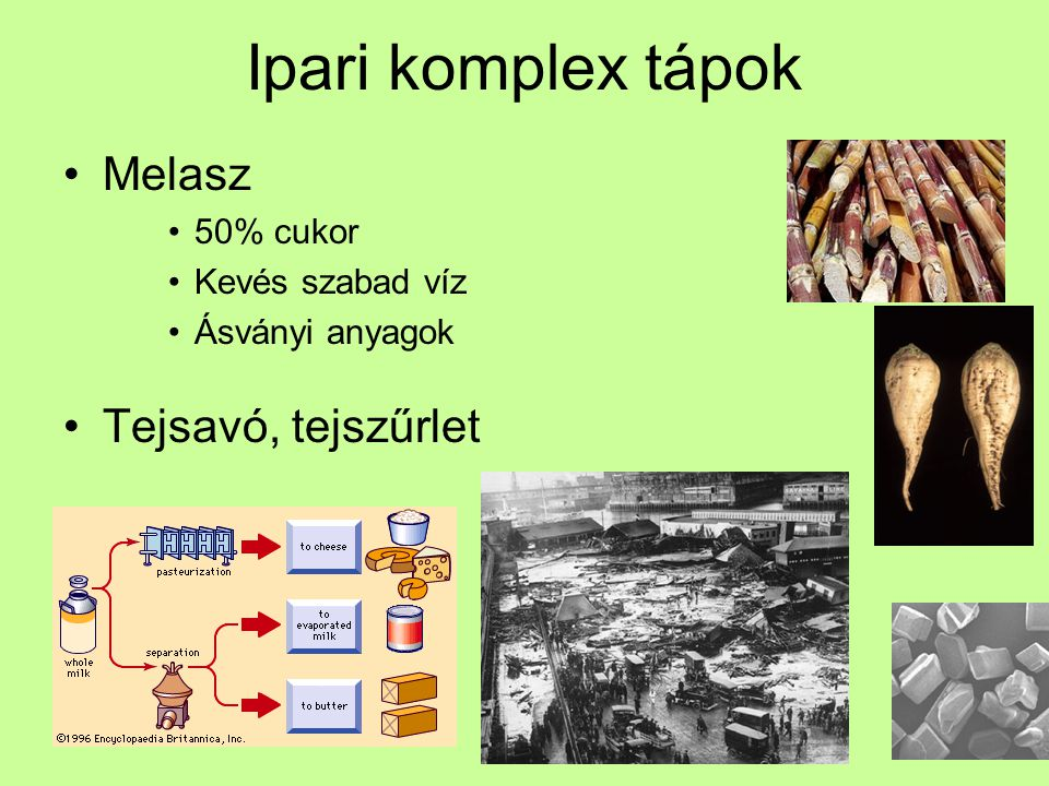 Ipari komplex tápok Melasz Tejsavó, tejszűrlet 50% cukor