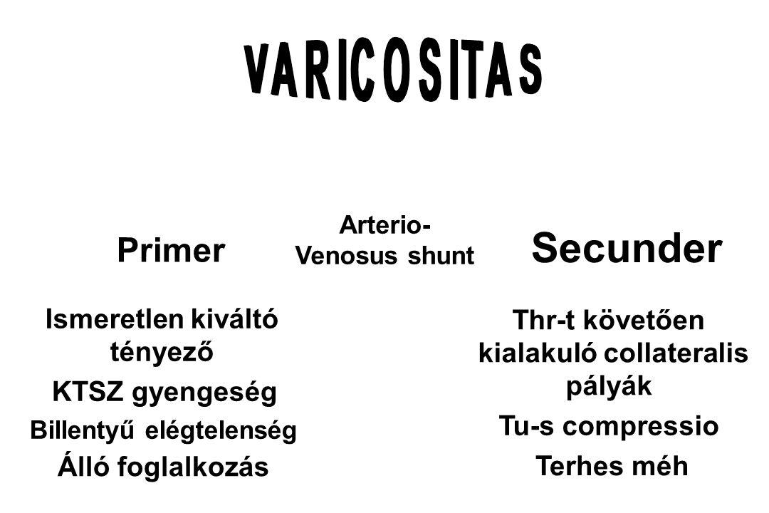 Arterio- Venosus shunt