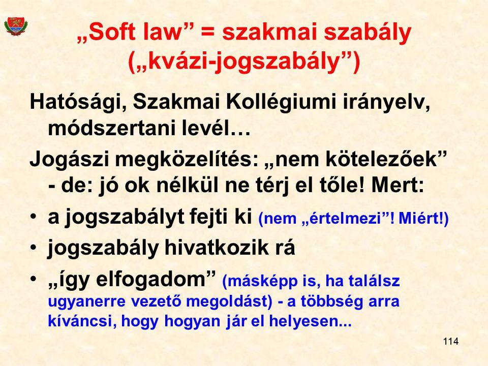 """""""Soft law = szakmai szabály (""""kvázi-jogszabály )"""