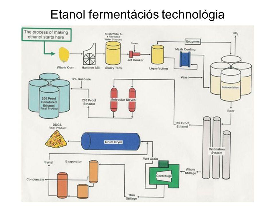 Etanol fermentációs technológia