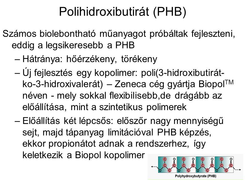 Polihidroxibutirát (PHB)