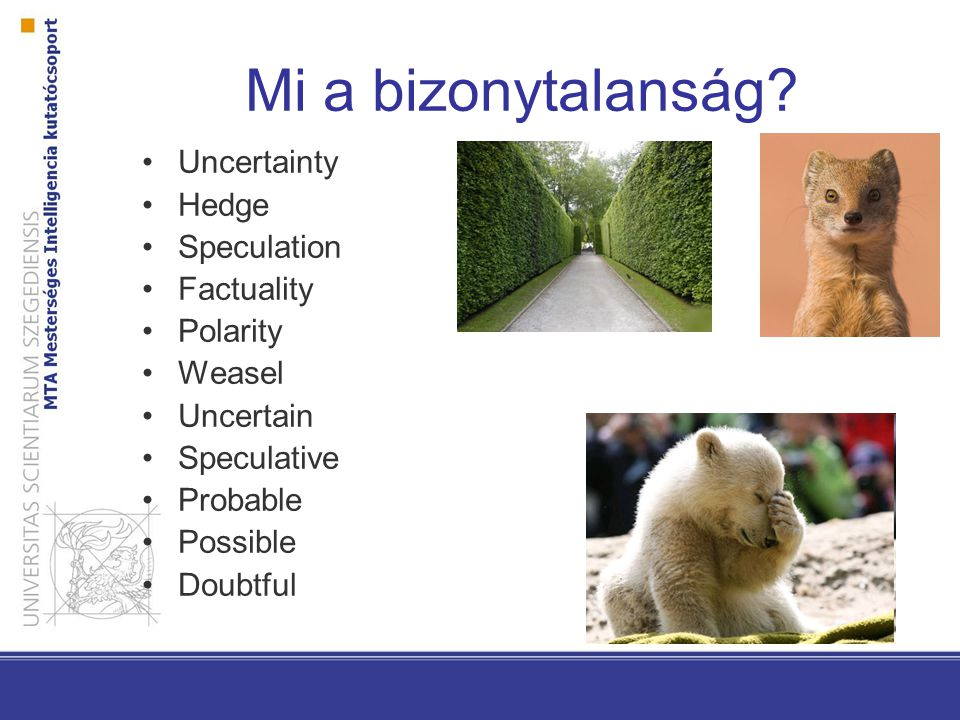 Mi a bizonytalanság Uncertainty Hedge Speculation Factuality Polarity