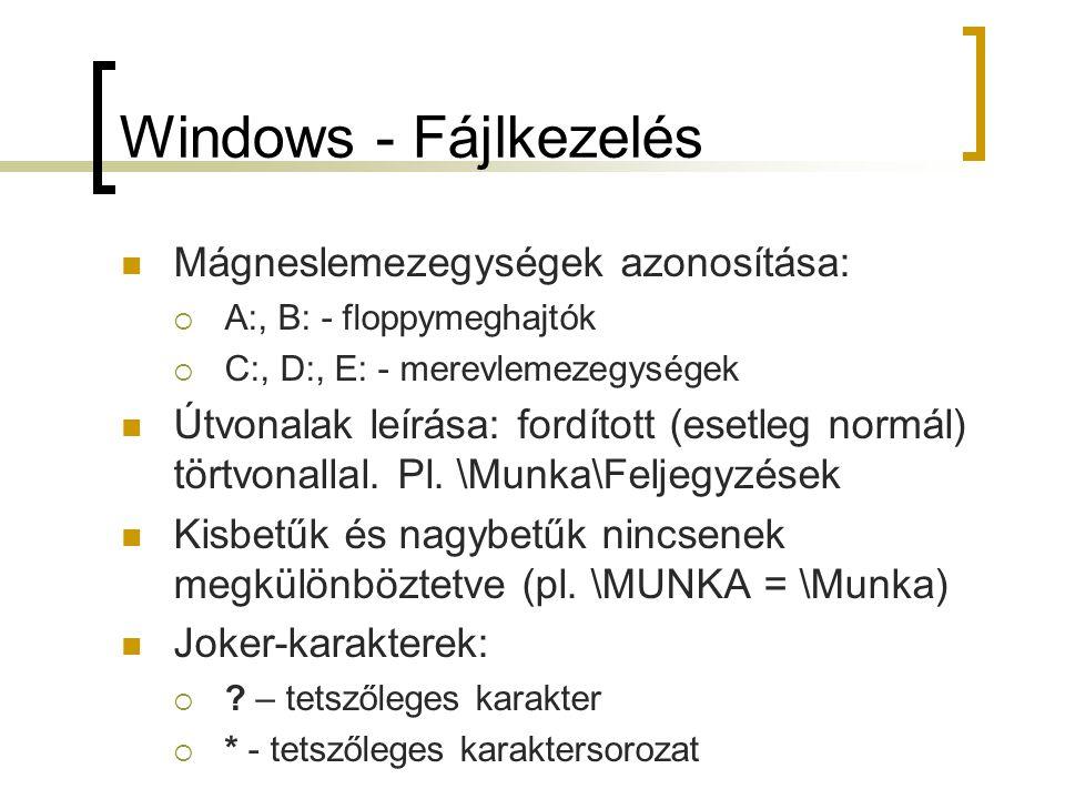 Windows - Fájlkezelés Mágneslemezegységek azonosítása: