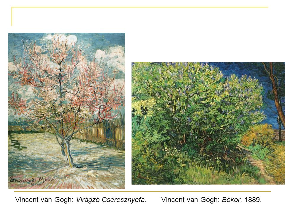 Vincent van Gogh: Virágzó Cseresznyefa.