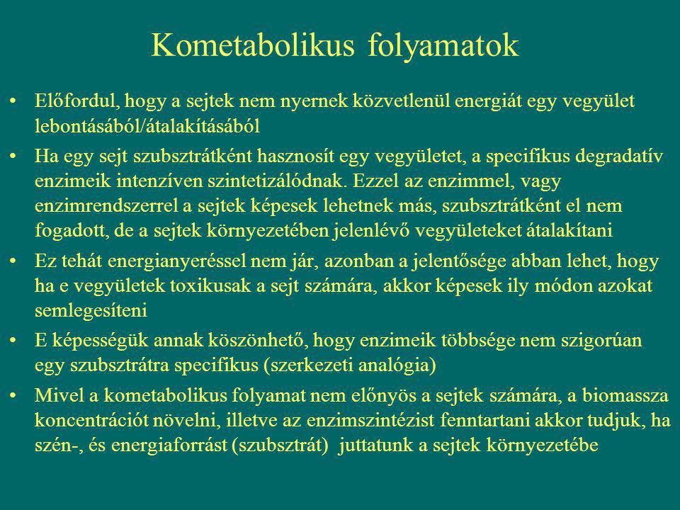 Kometabolikus folyamatok