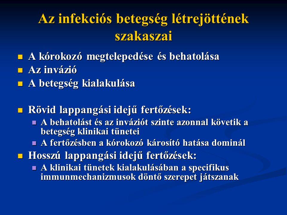Az infekciós betegség létrejöttének szakaszai