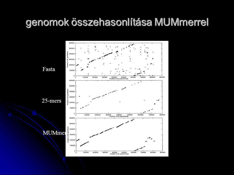 genomok összehasonlítása MUMmerrel