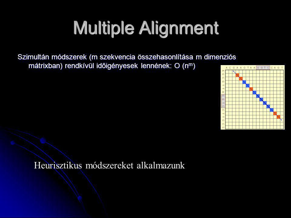Multiple Alignment Heurisztikus módszereket alkalmazunk