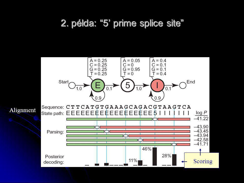 2. példa: 5' prime splice site