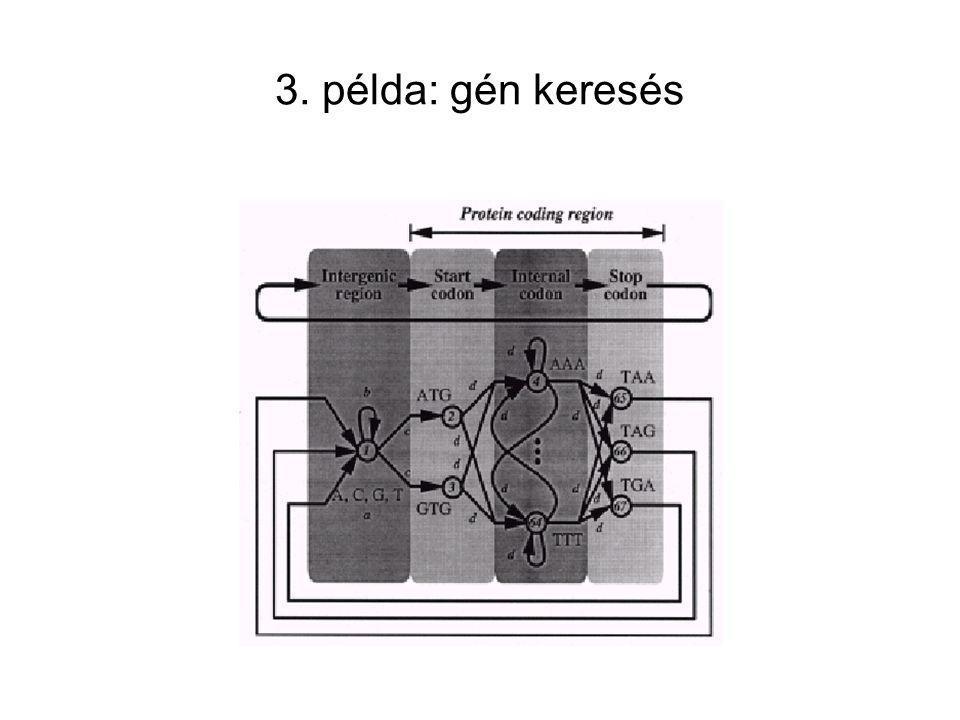 3. példa: gén keresés